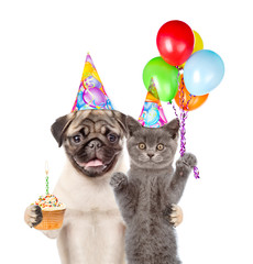 Cat and Dog in birthday hats holding balloons and cake. isolated on white background