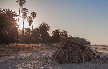 California Beach Sunrise