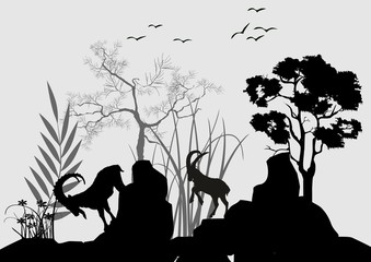 Silhouettes of wild goats jumping on rocks vector illustration