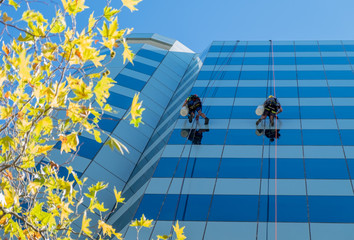 Two window washers abseiling down glass skyscraper
