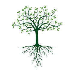 Tree with roots and green leafs. Vector Illustration.