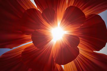 Bright sunny red poppy flover background vector in 3d illustration