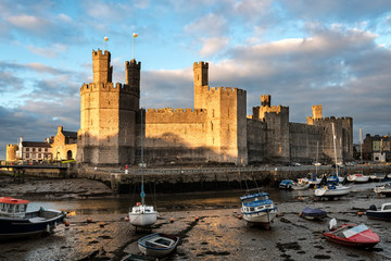 Wall Murals Northern Europe Caernarfon Castle in North Wales at sunset