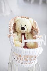 Toy bear in a pram