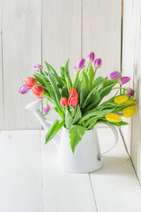 A colourful and young tulip in the watering can