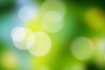 Green blur spring bokeh background.