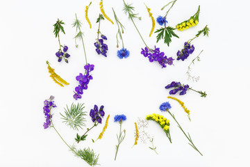 Flowers on white background. Top view, flat lay
