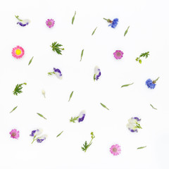 Flowers pattern on white background. Top view, flat lay