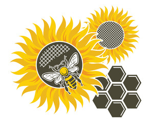 illustration of sunflower, bee and honeycomb