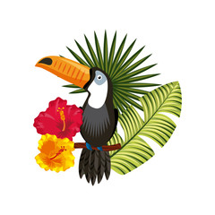 toucan with tropical flowers and leaves over white background. colorful design. vector illustration