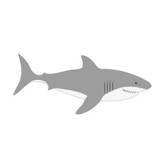 Cute white shark vector illustration isolated on white