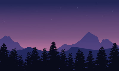Silhouette of mountain with spruce landscape