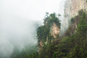 mountains are surrounded by clouds at Zhangjiajie, a national park in China known for its surreal scenery of rock formations.