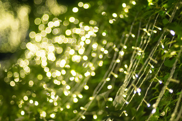 Blurred background of green tree decoration with light bokeh