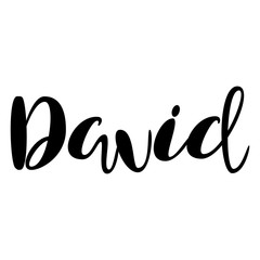 Male name - David. Lettering design. Handwritten typography. Vector