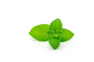 Peppermint leaves isolated on white background, horizontal