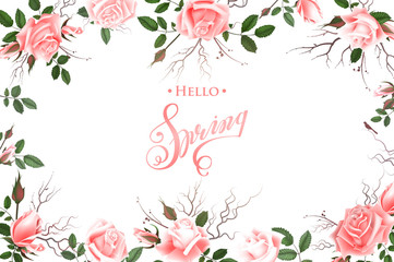 Hello Spring Background with Roses. Hand Drawn Lettering