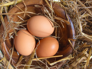 Fresh brown chicken eggs on a background of hay and straw in a rustic rural old style. The view from above is a flat horizontal