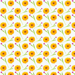 Abstract background the pattern of gerbera flowers orange and red Tulip