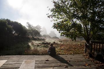 Rear view of woman sitting against cannabis farm