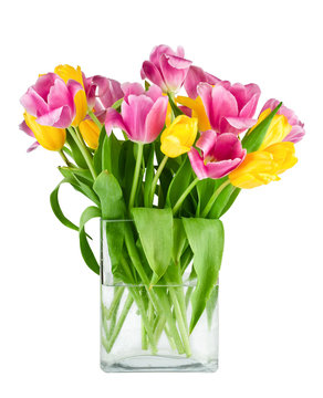 Bouquet of fresh tulips in vase isolated
