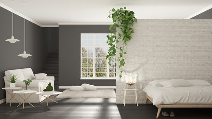 Scandinavian white and gray minimalist living with bedroom, open space, one room apartment, classic interior design