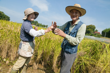 Senior Couple Dancing in Paddy Field