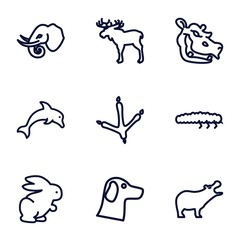 Set of 9 wildlife outline icons