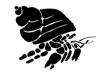 graphic hermit crab, vector