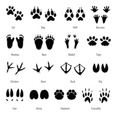 Foot trail vector. Animal, birds and reptile footprint set. Collection of foot wild animal prints. Black different silhouettes of tracks with captions.