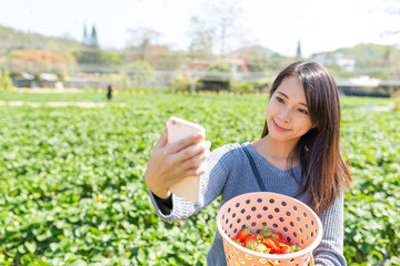 Woman taking selfie with her harvest of strawberry
