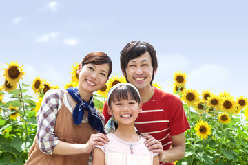 Portrait of family in sunflower field, smiling