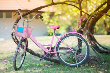 Pink bike parking in the park