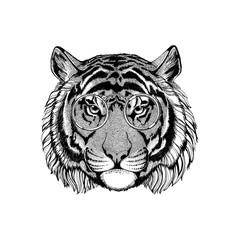 Wild tiger wearing vintage glasses Hipster animal Image for tattoo, logo, emblem, badge design