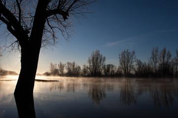 Wintermorgen an der Aller bei Hochwasser