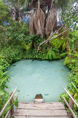 Fervedouro Rio Sono - A typical natural pool, source of rivers at Jalapao - Brazil