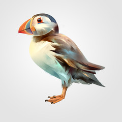 Painted bright isolated bird Puffin