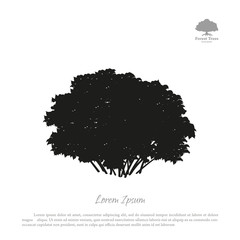 Black silhouette of a bush on a white background. Forest trees