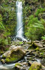 Fototapete - Erskine Falls