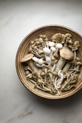 Speciality mushrooms in a ceramic bowl still life on top down shot