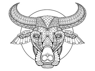 Buffalo head coloring book vector illustration