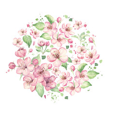 Floral circle with pink flowers, apple, cherry, sakura, blossom. Watercolor illustration