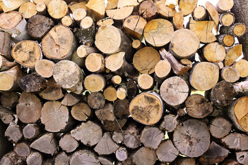 Outdoor Wood Log Pile Stacked with Grain Side Visible