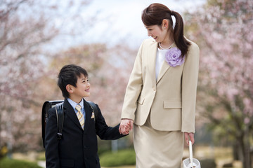 Elementary school boy holding hands with Mother under cherry blossoms