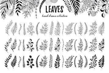 Hand drawn branches collection. Set of sketch style leaves isolated on white background. Vintage ink floral elements. Decorative plants for greeting card and invitation design.