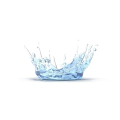 water splash with ripple isolated on white. 3D illustration