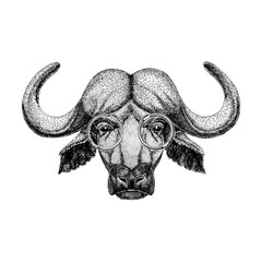 Buffalo wearing vintage glasses Image of bison, bull, buffalo for tattoo, logo, emblem, badge design