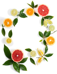 Circle of citrus fruits