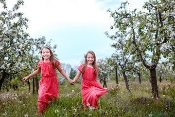 Twin sisters playing in blooming fruit garden. Cute little girls with bunch of dandelions near apple trees in blossom. Kid enjoying happy childhood. Family, love, peace and happiness concept