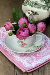 Beautiful fresh roses in a cup